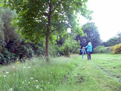 jardin milieu